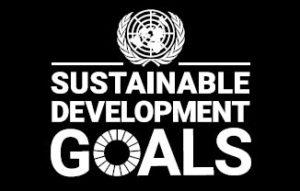 SDGs GOALS Logo